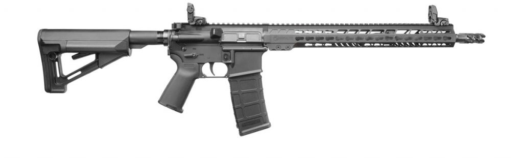 A currrent model ArmaLite AR-15 for sale.